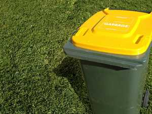 Third bin? All options explored in waste strategy