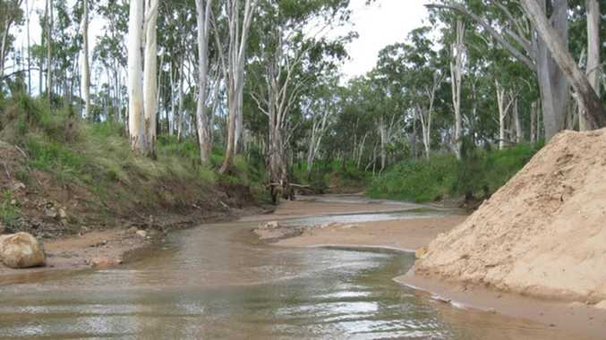 Conservation groups slam 'blind eye' to Adani water scheme