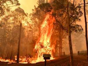 Smoke haze triggers alarm chaos across Sydney