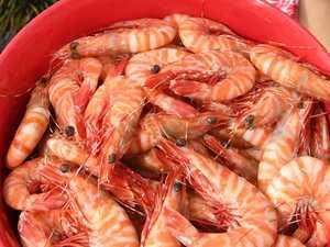 Batter N Crumbz bring out the tiger prawns