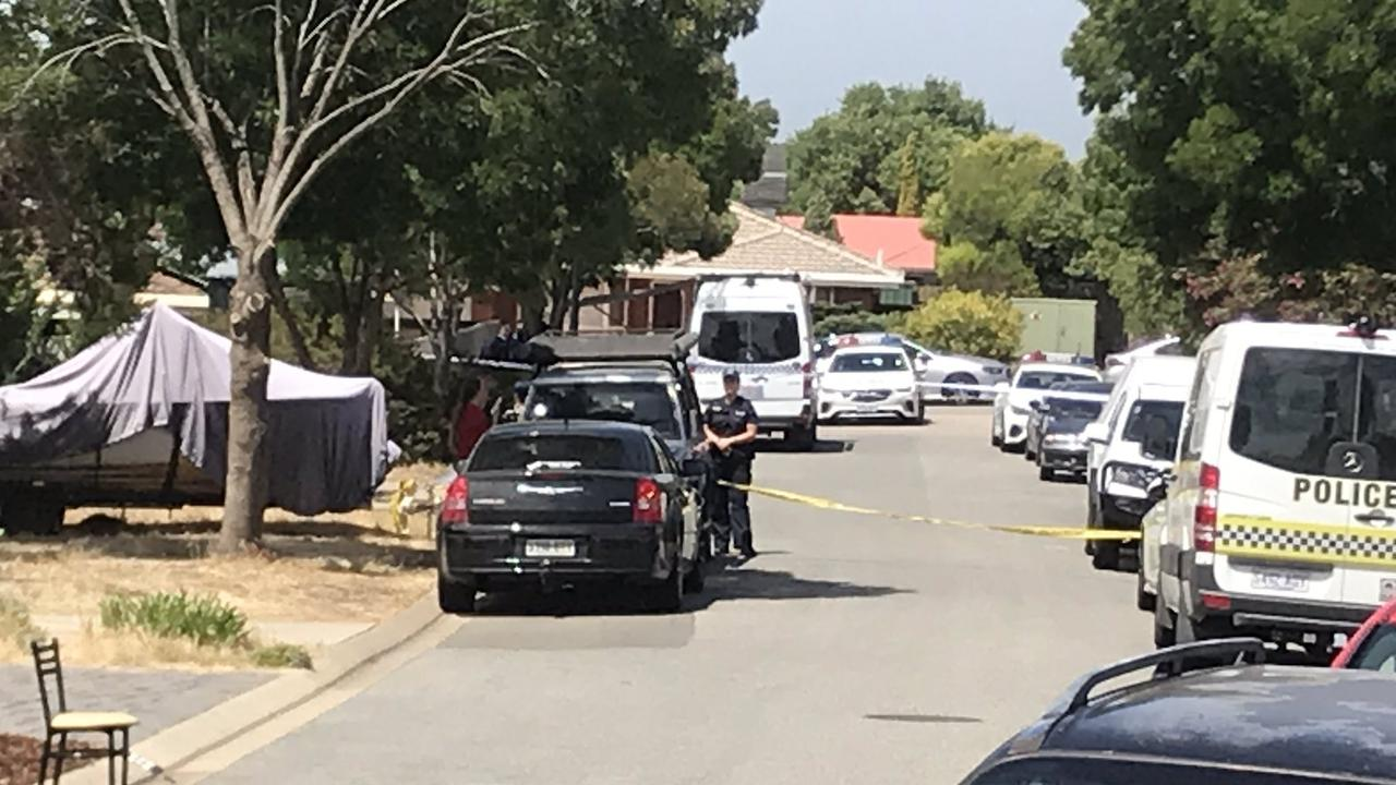 The man allegedly murdered and wrapped in carpet in Adelaide was a suspected paedophile, a court has heard.