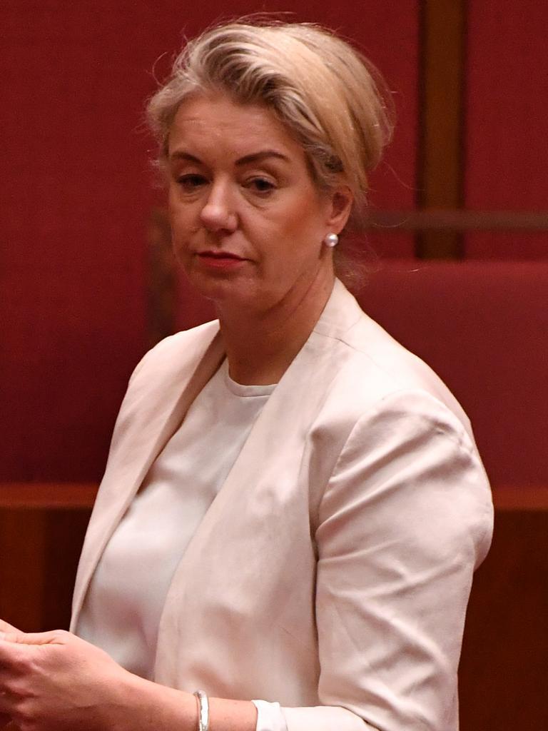 Agriculture Minister Bridget McKenzie