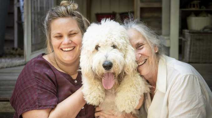 GOOD BOY: How social media healed hearts and found Hamish