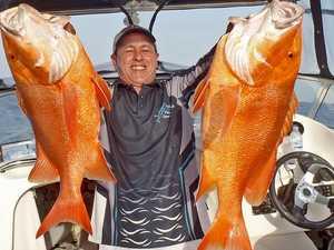 Technique catching 80cm fish in the Gympie region