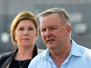 Albanese slams lack of federal climate policy
