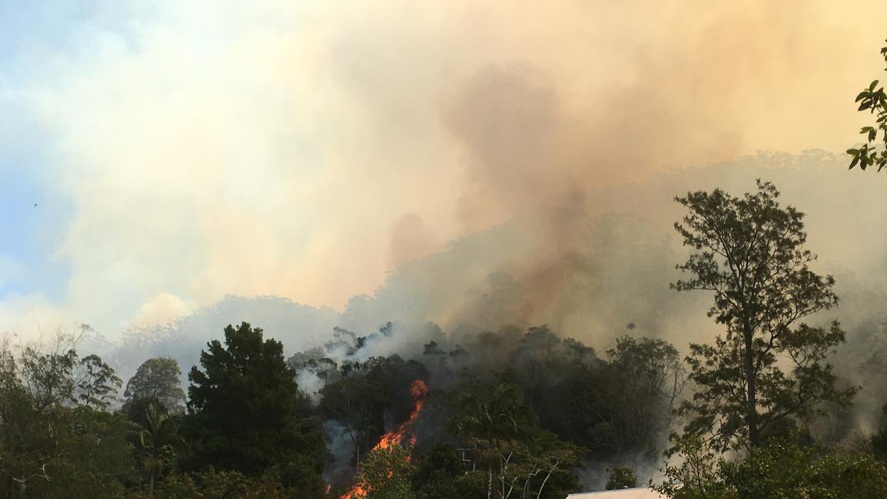 The Mt Nardi fire grounds near Protestors Falls.