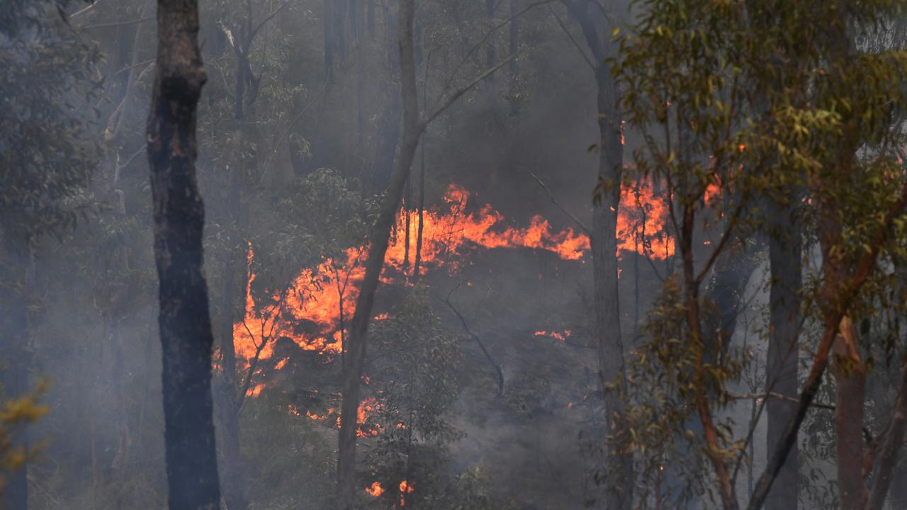 RFS crews continue to contain the Gospers Mountain Fire (AAP Image/Dean Lewins)