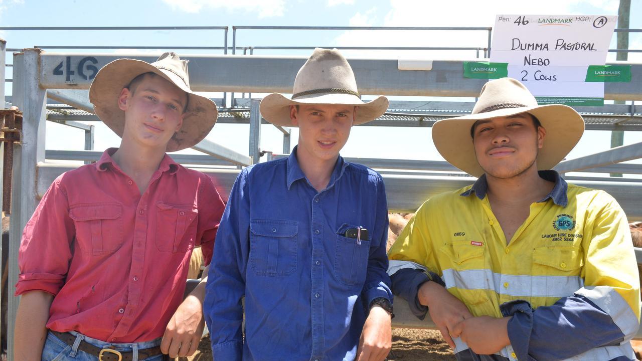 Sarina Range residents Lachlan McFadzen, 14, Tim McFadzen, 16, and Jayden Chapman-Tau, 15. Photo: Zizi Averill