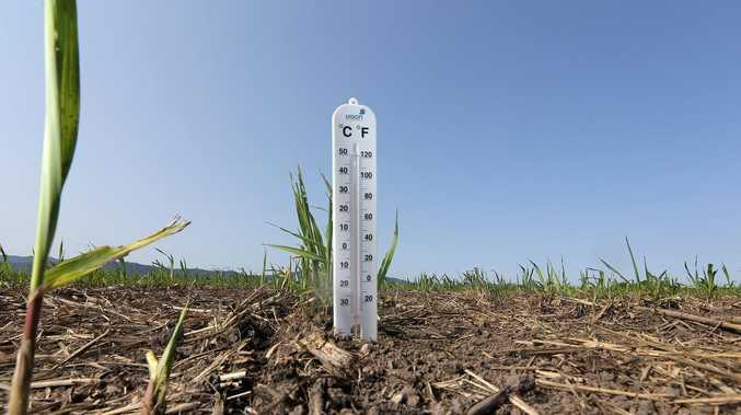 NEW RECORD: Temps soar to 43+ smashing last weeks' maximum