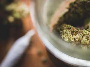 Son busted buying marijuana from mum