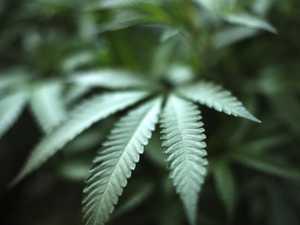 Drugs land Capricorn Coast teen in court