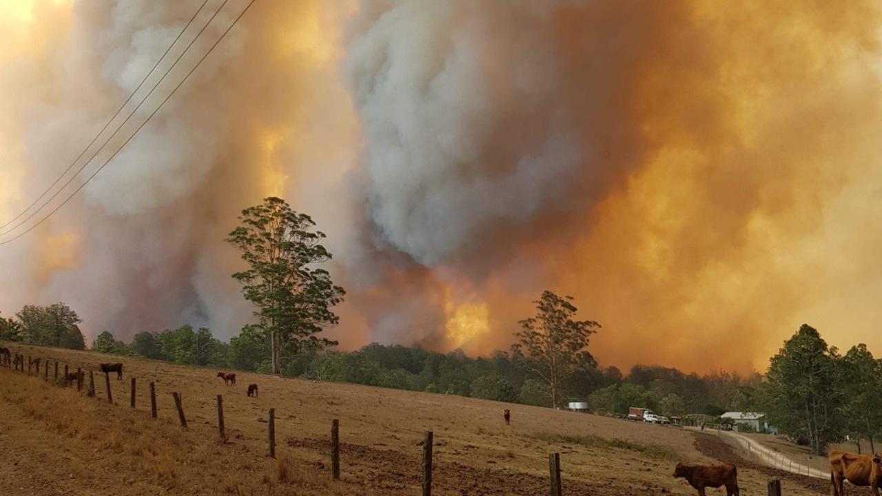 TERRIFYING SIGHT: The family had never seen a fire so ferocious.