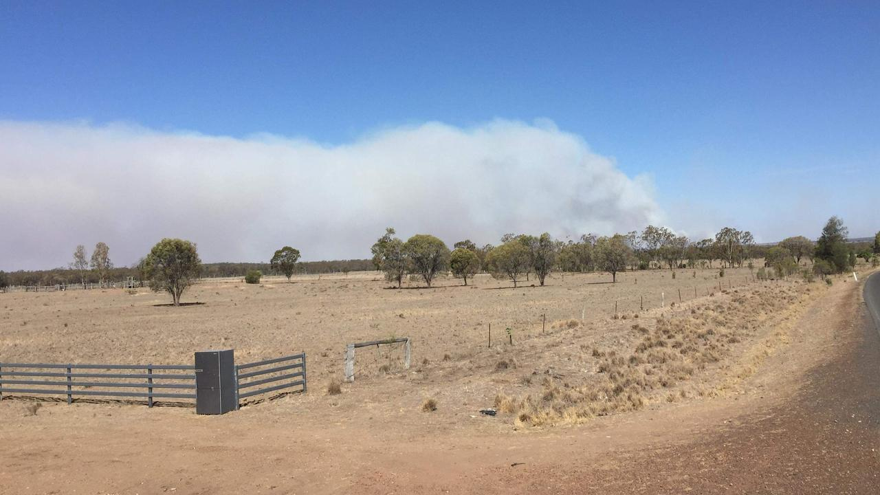 A shot of Kumbrilla State Forest near Dalby during the ongoing drought.