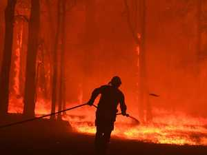 Bushfire danger closes State Forests over the festive season