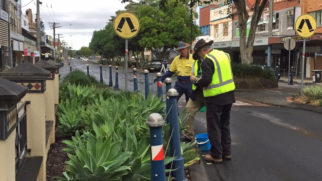 NO MORE ANTS: NSW Department of Primary Industries and Lismore Council staff baiting and tracking yellow crazy ants in Molesworth Street, Lismore as part of the successful biosecurity operation. No YCA have been detected in the area since May 2019.