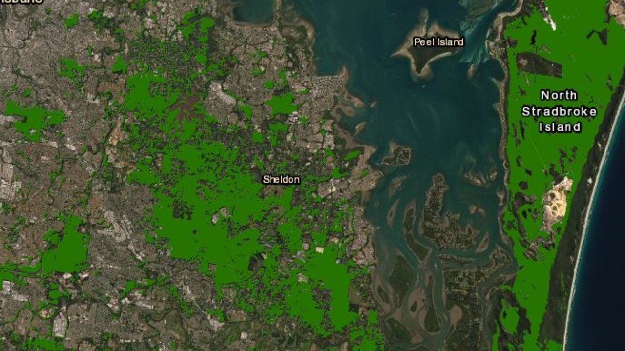 Proposed koala habitat, mapped out by the Queensland Government.