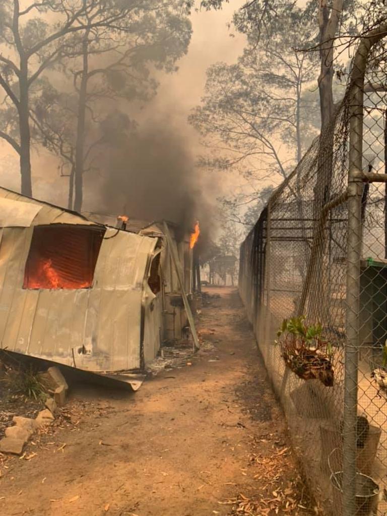 Fire encroaches the dingo sanctuary at Bargo. Picture: Facebook/