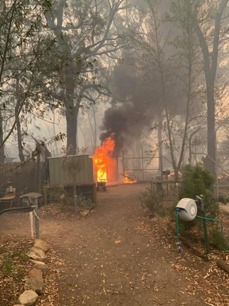 Bargo Dingo Sanctuary in flames. Volunteers have asked locals to contact them via Facebook if they sight a dingo and they'll come and collect it. Picture: Facebook