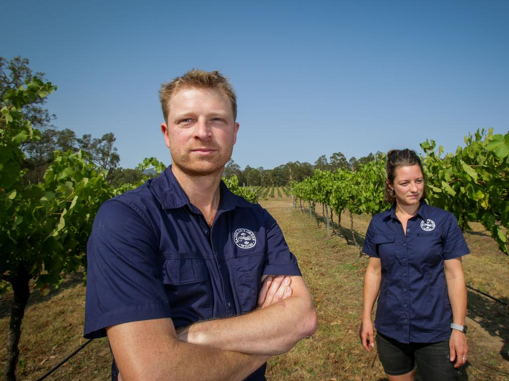 Saddler's Creek Wines has ben been experiencing a decline in visitors recently due to the bushfires. Picture: Liam Driver