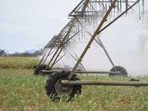 Next seven months will be crucial for irrigators, farmers