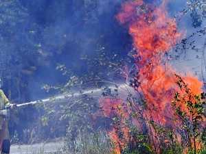 Plantation forests close as fireys battle erratic blazes