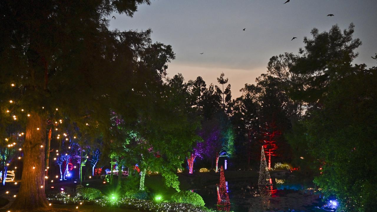 Christmas Wonderland in Nerima Gardens at Queens Park. Picture: Cordell Richardson