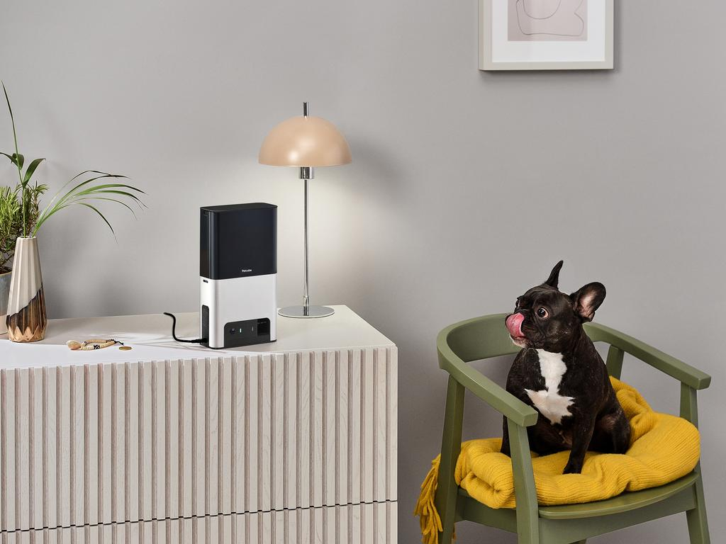 The Petcube Bites 2 device lets pet owners watch live streams of their pet at home and works as a treat dispenser.