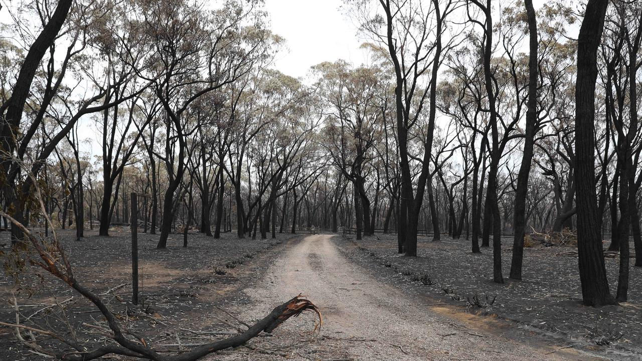 Balmoral was badly hit by the fires over the weekend. Picture: Rohan Kelly