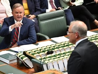 Scott Morrison should bring forward a meeting of federal, state and territory governments to deal with the bushfire emergency, Anthony Albanese says.