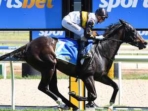 Filly can take trainer on Magic ride