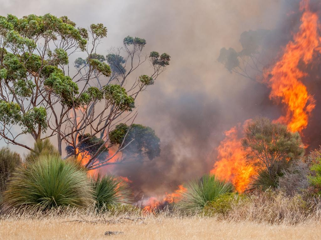 CFS crews battle a bushfire at Middle Rive on Kangaroo Island. Picture: Sean McGowan.