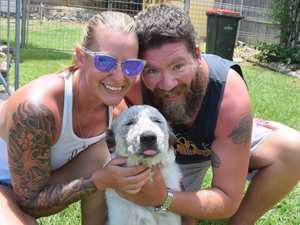'He chose us': Rescue puppy finds loving home