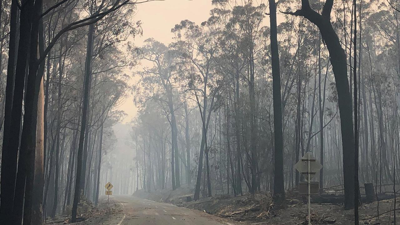 The Great Alpine Road is closed between Bruthen and Ensay. Picture: DELWP Gippsland