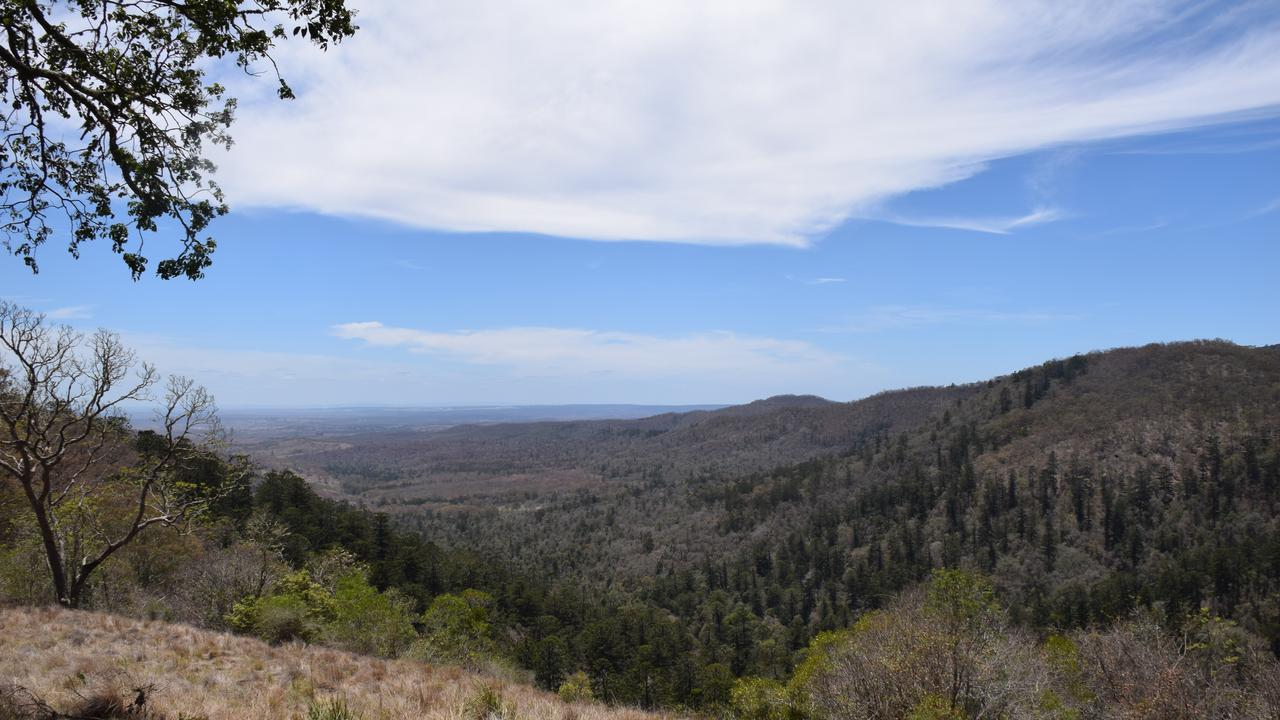 The view from high up in the Bunya Mountains Photo: Tristan Evert