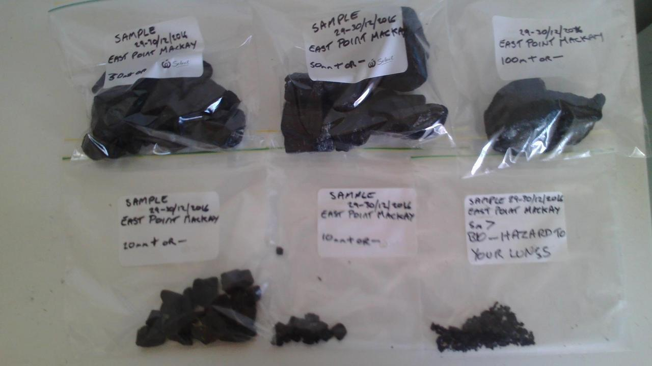 Samples of coal Lance Payne says he found at East Point.