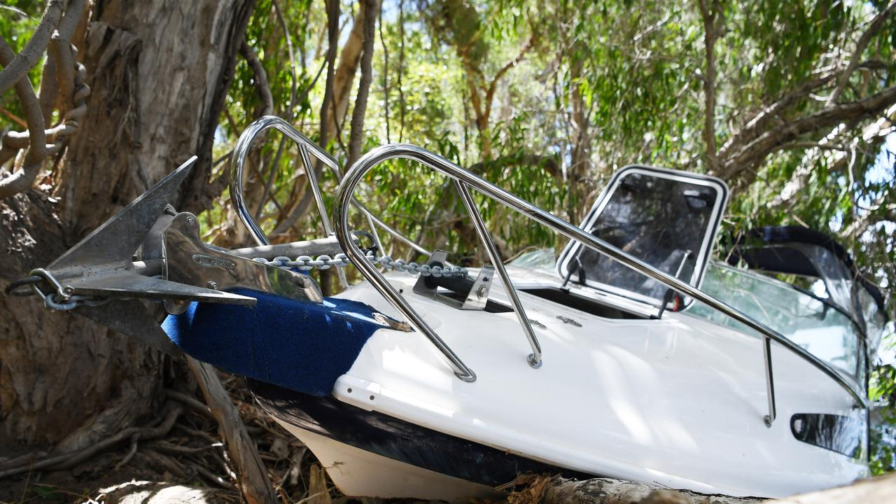 The boat crashed into trees on the bank.