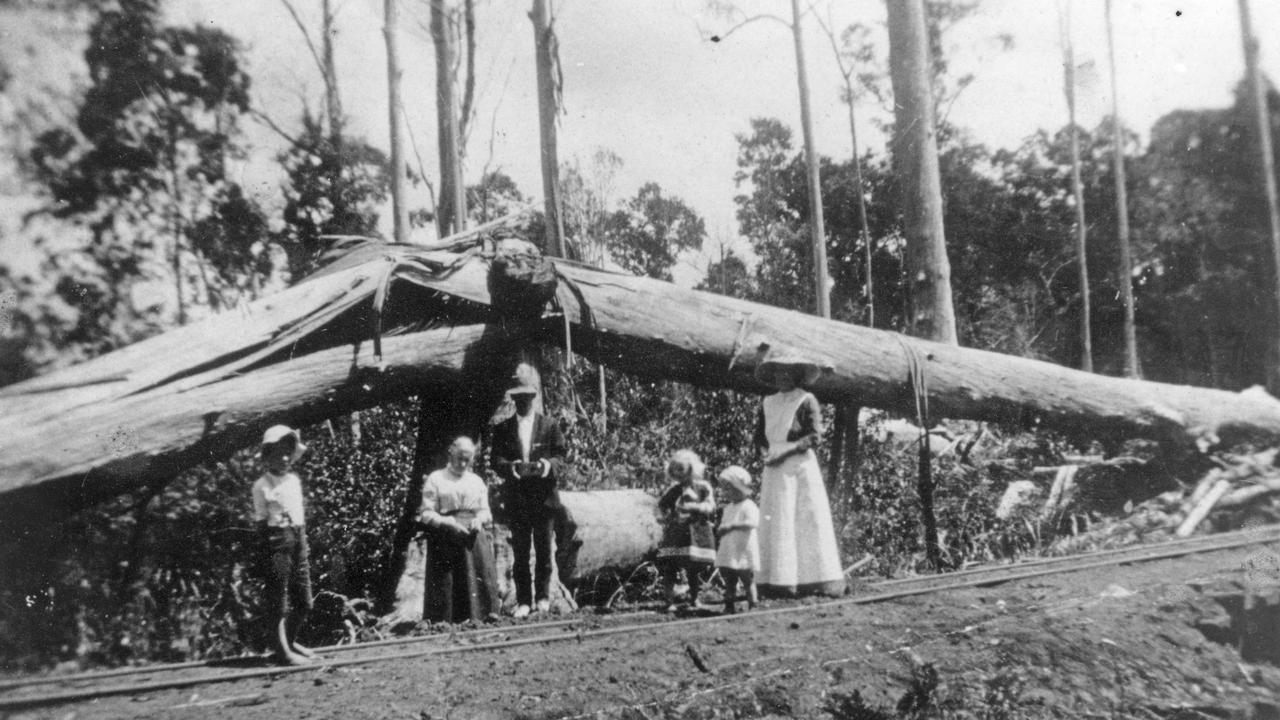 Wells family members beside the Moreton Central Sugar Mill tramway line to Deep Water, Bli Bli, December 19, 1913. The tramway line was located below the Wells family residence near Deepwater, on Petrie Creek, Bli Bli. It was the second tramway line constructed by the Moreton Central Sugar Mill and initially extended to Sylvania in 1902. Picture: Contributed