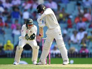 Test wrap: NZ fights hard but Marnus takes honours with 215