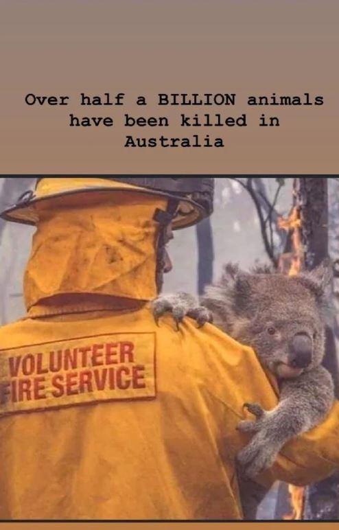 Kim Kardashian West's post about the Australian bushfire crisis. Picture: Instagram/Kim Kardashian West