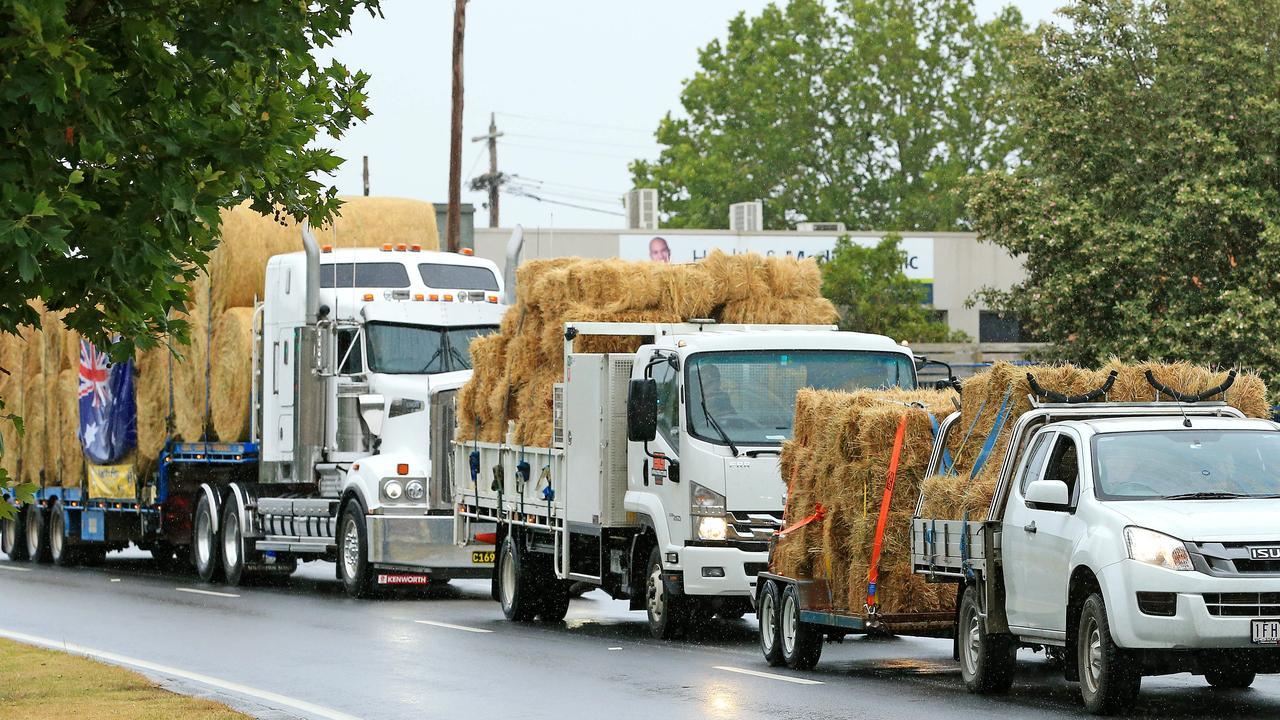 The convoy of trucks travelled from Ballarat to Buchan. Picture: Mark Stewart