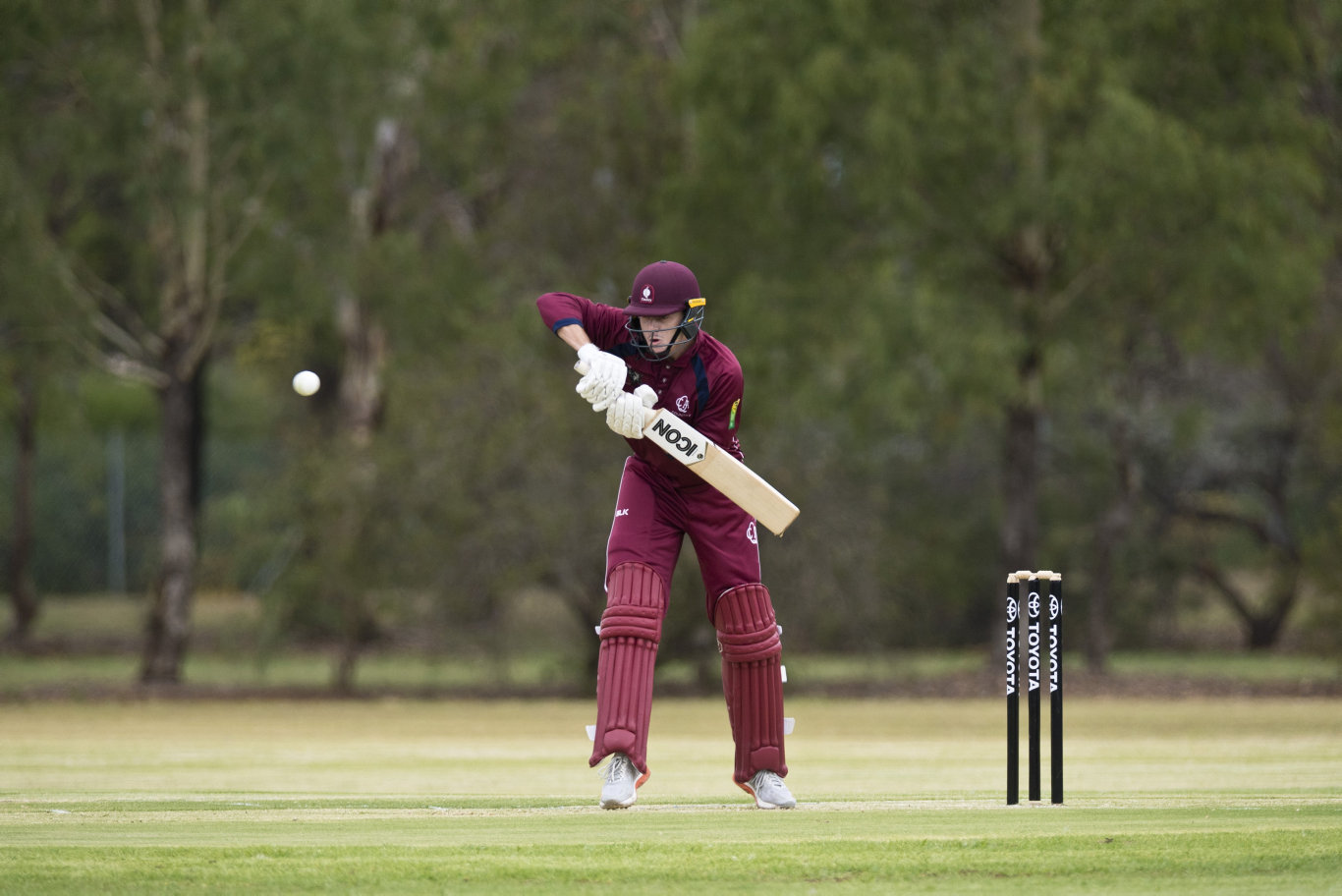 Sam Lowry bats for Queensland against Australian Capital Territory in Australian Country Cricket Championships round six at Middle Ridge Park, Monday, January 6, 2020. Picture: Kevin Farmer