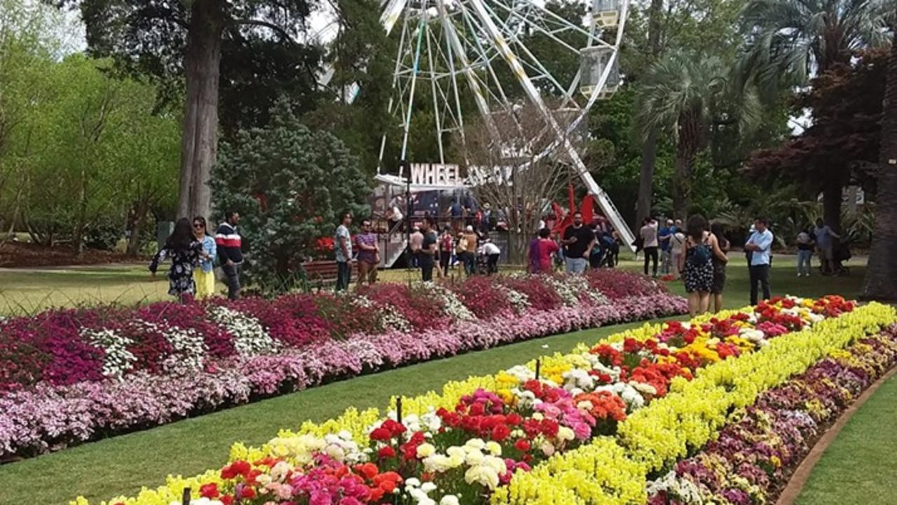 Toowoomba Carnival of Flowers.