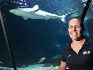Expert responds to recent fatal shark attack