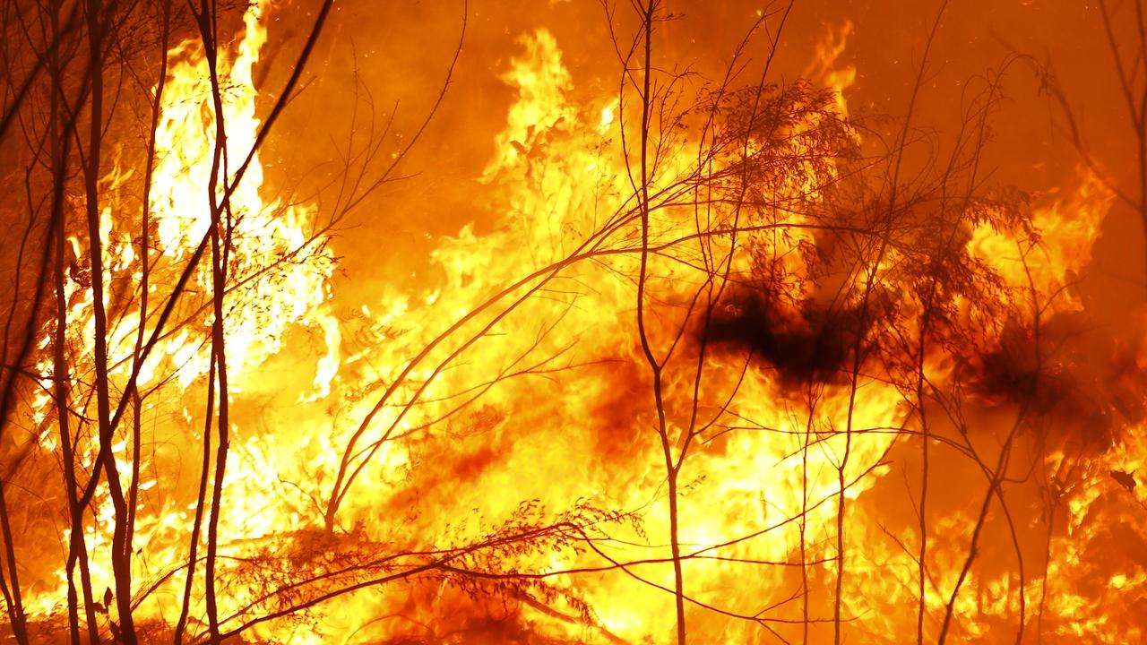 Cruel scammers are trying to cash in on our bushfire disaster. Picture: Darrian Traynor/Getty Images