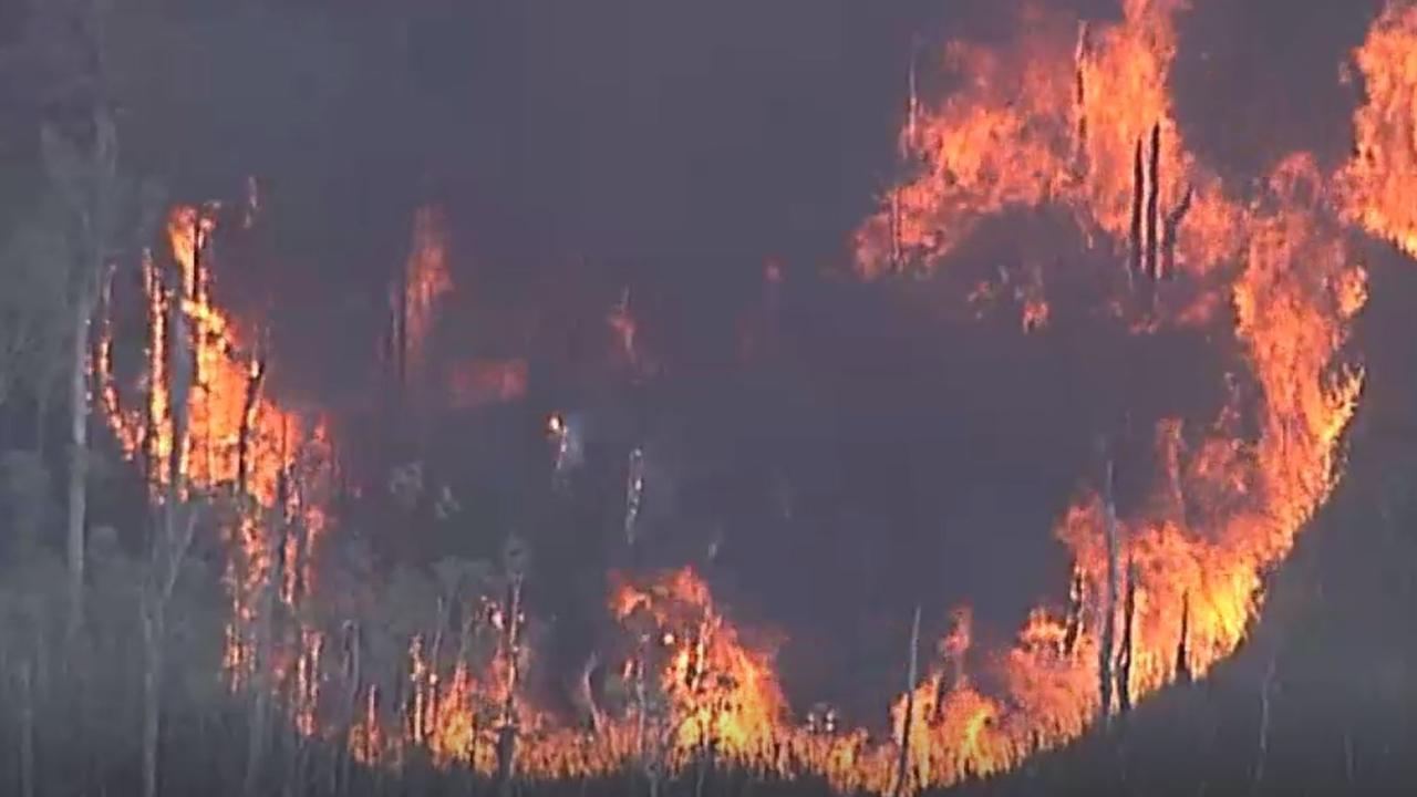 A bushfire burning near the Sunshine Coast in mid-December. Picture: ABC