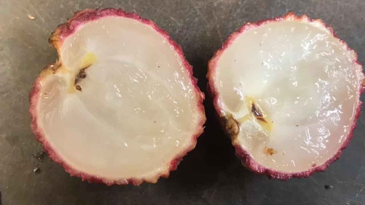 Camilleri's Farm Market has offered lychee lovers a bite of a seedless variety of the fruit in an Australian first.