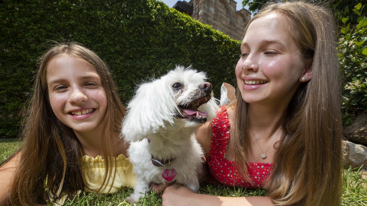 Sisters Claudia 13, and Mia Brown 14, with Buffy the Maltese Terrier. Photo Lachie Millard