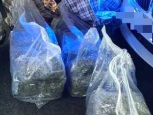 Driver allegedly busted with 28kg of cannabis faces court