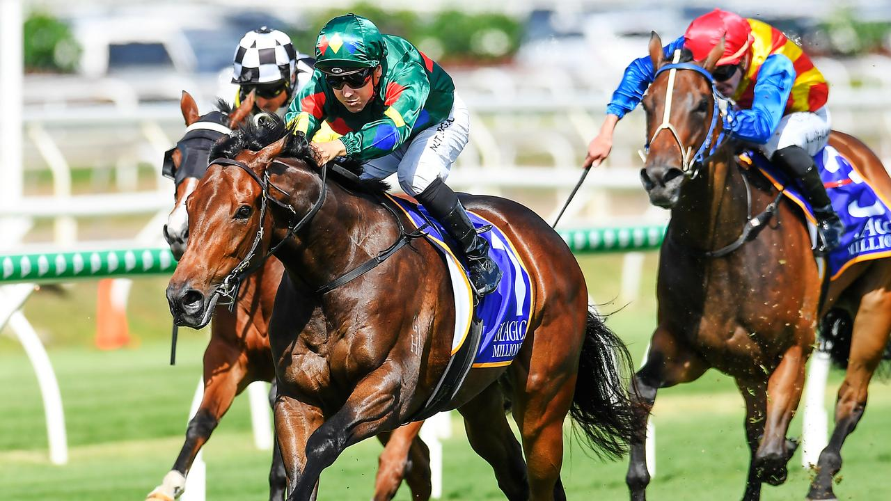 Alligator Blood is a dominant favourite for the Magic Millions Guineas. Picture: AAP