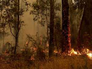 ATA urges industry to remain safe during bushfire crisis